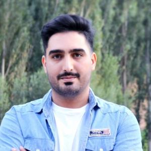 محمد سرداری